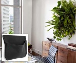 wall planters by woolly pocket